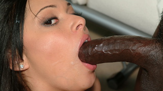 Sexy and alluring brunette sucking a hard cock