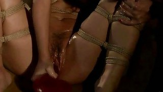 Classy Mistress Playing With Slavegirl