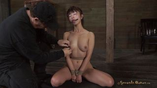 Brunetter, Asiatere, Milfs, Bondage, Blowjobs