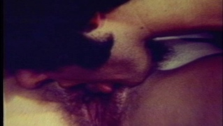 Chick with hairy pussy fucks in vintage scene