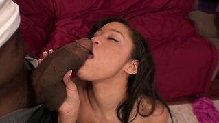 Blasian Hottie Jayla Starr Sucks And Fucks A Huge Black Cock