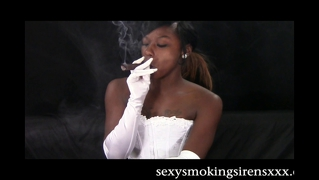 Chocolate White Lingerie Cigar