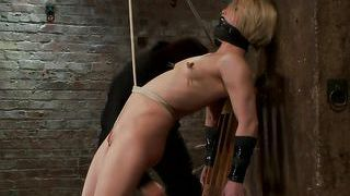 Whipping a skinny babe with laundry pliers on her nipples